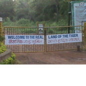 Tadoba Wilds - Animal Orphanage And Rescue Center.