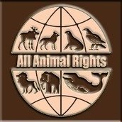 All Animal Rights