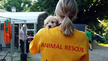 Support Puppy Mill Raids in Indiana