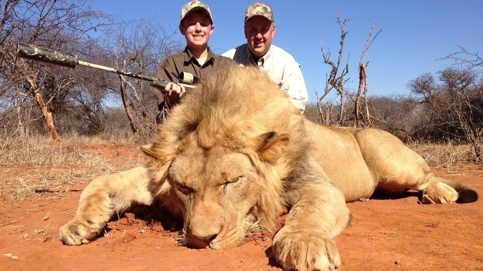 Petition · @HolidayInn @IHG : Cancel African trophy hunting expo # ...