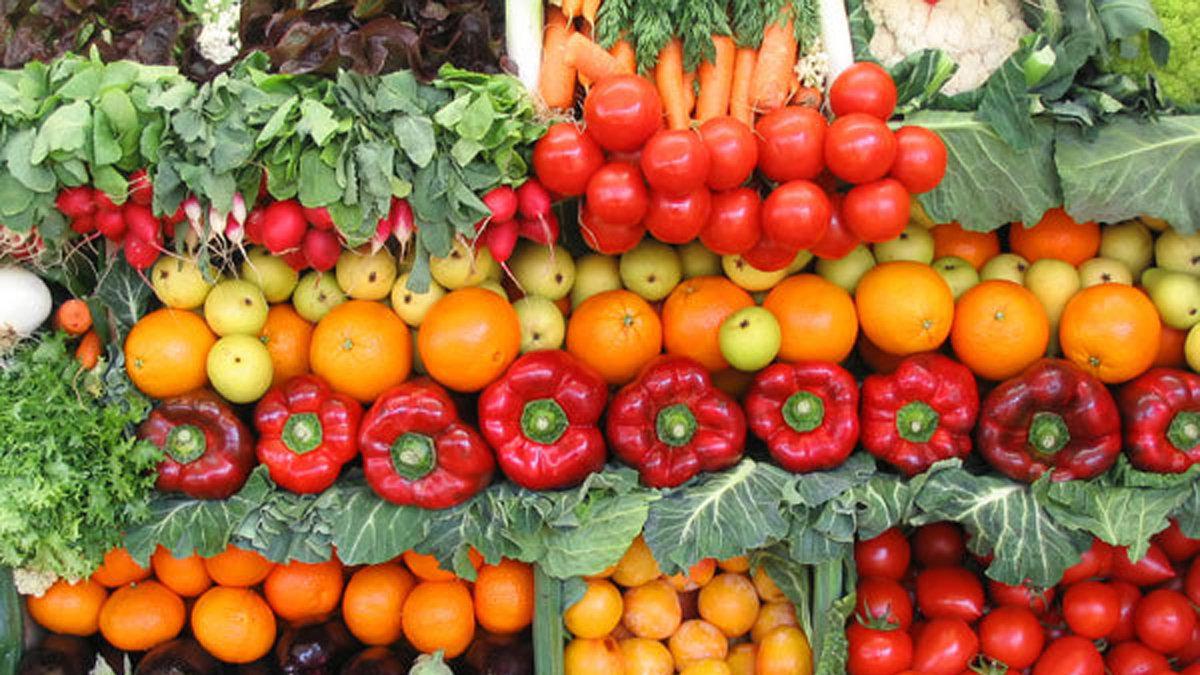 Pour une alternative végétarienne obligatoire dans les cantines scolaires