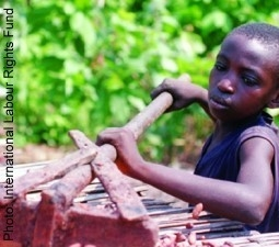 Ask Hershey to End Child Slavery in Cocoa Production and Go Fair Trade!
