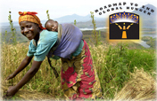 Help promote the Roadmap to End Global Hunger!