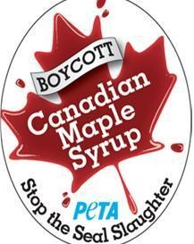 Save Seals by Boycotting Canadian Maple Syrup