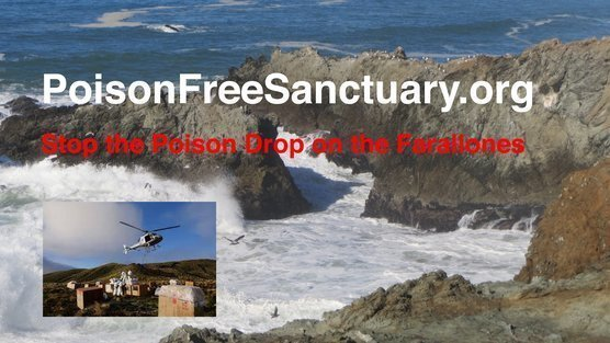 US Fish & Wildlife, Gerry McChesney, Refuge Manager: Stop the Plan to Dump Rat Poison over the Farallon Islands