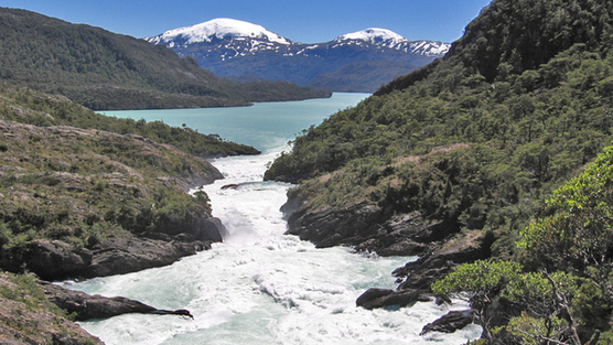 Dam Home Depot – Save Patagonia's Rivers!
