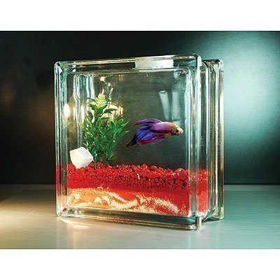 Petition petsmart stop selling fish tanks that hold for Petsmart fish tanks for sale