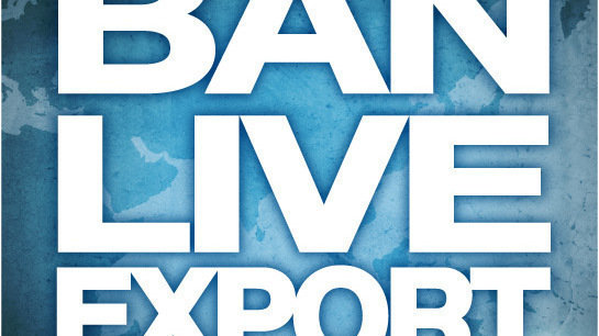 ban live export Urge the nz government: ban all live export home urge the nz government: ban all live export share this your first name your last name your email address.