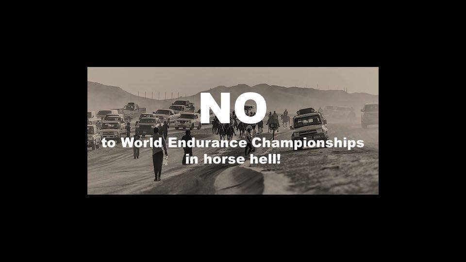 Ingmar de Vos - President Fédération Equestre Internationale: SAY NO! TO 2016 WORLD ENDURANCE CHAMPIONSHIPS IN HORSE HELL