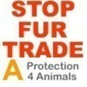 Protection 4 Animals