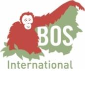Borneo Orangutan Survival International