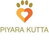 Piyara Kutta