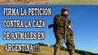 prohibir la caza de zorro en Argentina, habilitada desde el 19/06 hasta el 9/09 del 2013