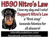 Nitro Foundation