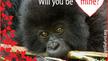 Send a Gorilla Valentine!
