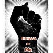 Briviesca en Pie
