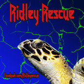 Ridley Rescue