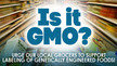 Urge Washington State grocers to support labeling of genetically engineered foods.