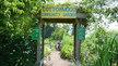 City of Vancouver: Save Cottonwood Community Garden!