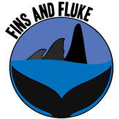 Fins and Fluke