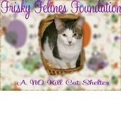 Frisky Felines Foundation