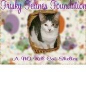 Frisky Felines Foundation