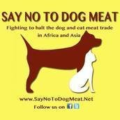 Say No To Dog Meat.Net