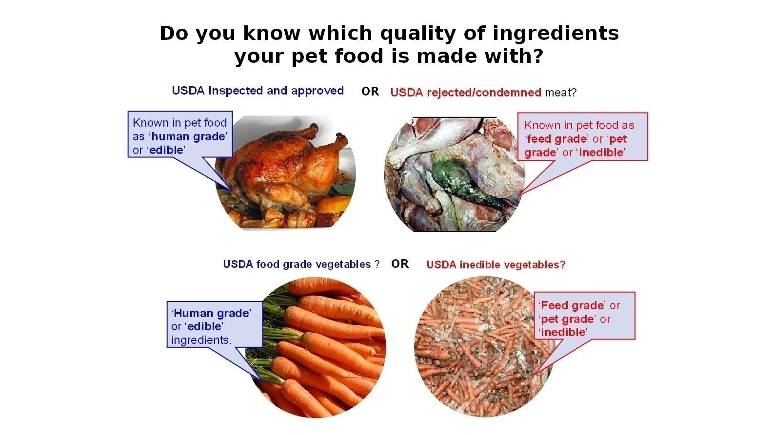 American Dog Food Manufacturers