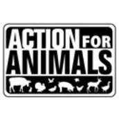 Action for Animals