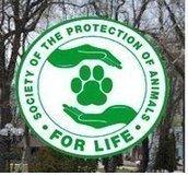 """Общество защиты животных """"За Жизнь"""""""