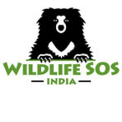 Wildlife SOS