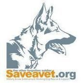 Save-A-Vet