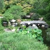 Save the Hannah Carter Japanese Garden
