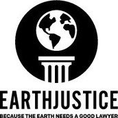 Marjorie Mulhall, with Earthjustice