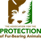 The Association for the Protection of Fur-Bearing Animals