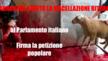 AL GOVERNO ED AL PARLAMENTO ITALIANO:   ABROGARE SUBITO LA MACELLAZIONE RITUALE - nessuno puo' arrogarsi il diritto di imporre la propria cultura ad un popolo ospitante ed avverso a tali barbare tradizioni
