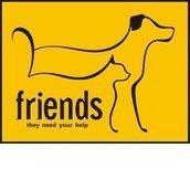 """Приют  для бездомных животных """"FRIENDS"""""""
