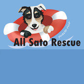 All Sato Rescue