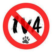Mascotas Contra el IVA