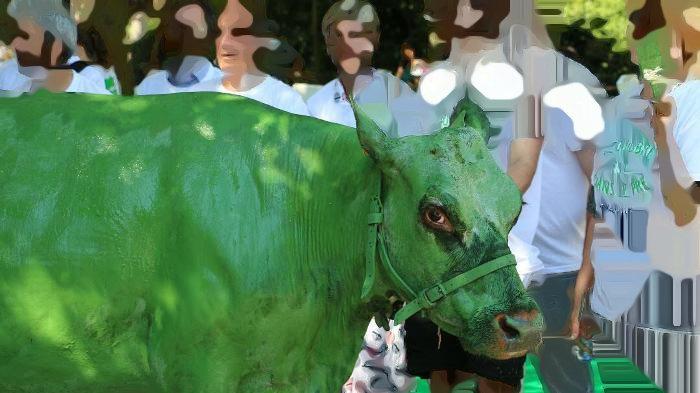 Épargner la vie de la vache verte