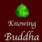 Knowing Buddha Organization