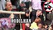 Barbarie de los tauricidas: Exigimos la inmediata destitución del alcalde de Rodilhan