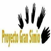 Proyecto Gran Simio (GAP-PGS-España)